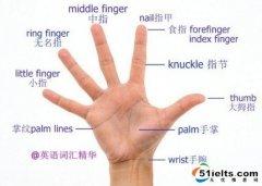 """每日雅思词汇:""""手""""中的词汇"""